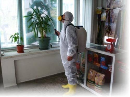 Böcek İlaçlama Yöntemleri